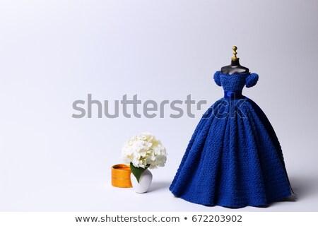 черный манекен платье иллюстрация элегантный девушки Сток-фото © lenm