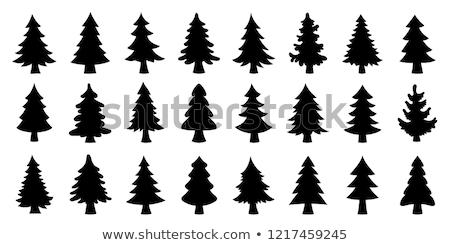 fa · örökzöld · fák · fedett · hó · tél - stock fotó © sonya_illustrations