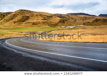 пейзаж влажный дороги Исландия дождь бурный Сток-фото © Kotenko