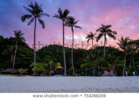 elöl · sziget · gyönyörű · természetes · tájképek · tengerpart - stock fotó © Yongkiet
