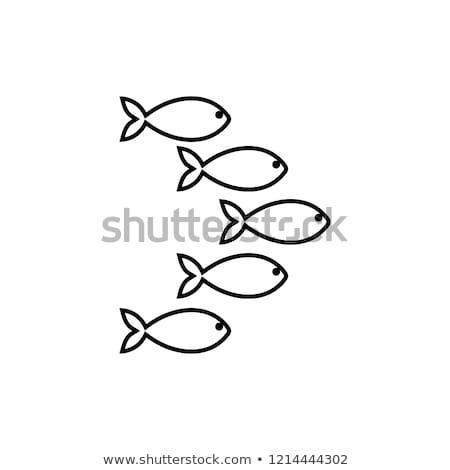 Peixe linear símbolo marinha animal assinar Foto stock © popaukropa