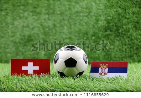 サッカー 一致 セルビア 対 スイス サッカー ストックフォト © Zerbor