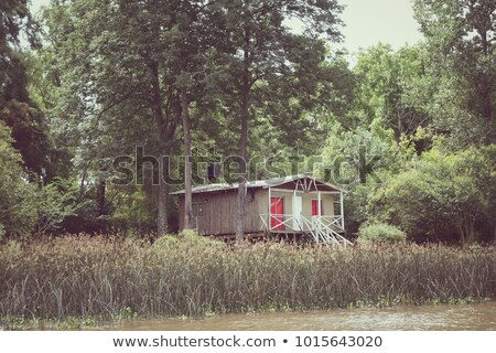 Old shed on the Tigre river Delta. Buenos Aires Stock photo © daboost