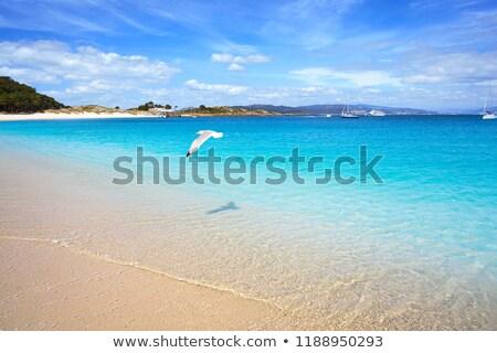 Praia de Rodas beach in islas Cies island Vigo Spain Stock photo © lunamarina