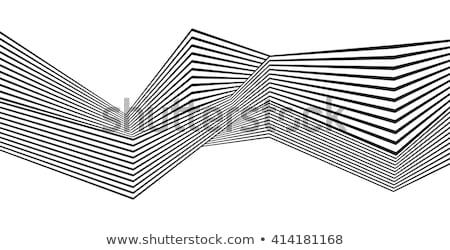 Absztrakt csíkos feketefehér görbe minta textúra Stock fotó © ESSL