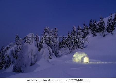 Wonderful winter scenery with snow igloo at night Stock photo © Kotenko