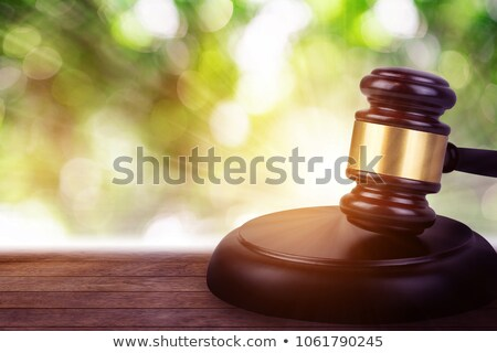 裁判官 家 モデル 小槌 デスク ストックフォト © AndreyPopov