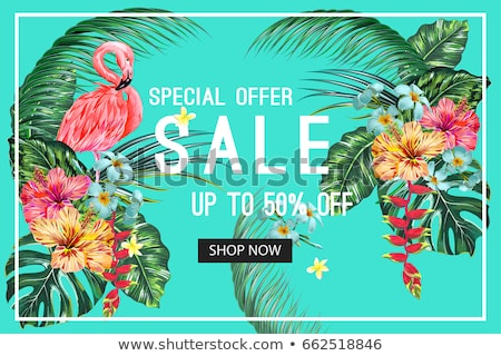 Summer banner of tropical leaves and flamingo Stock photo © cienpies