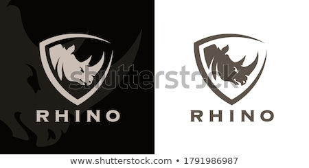 Rhino Stock photo © colematt