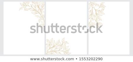 Elegáns vektor arany virágmintás keretek terv Stock fotó © Pravokrugulnik