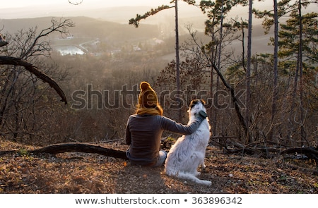 Forest camping with the best friend - dog Stock photo © barsrsind