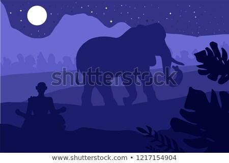 Indiai trópusi tájkép elefánt szerzetes erdő Stock fotó © barsrsind