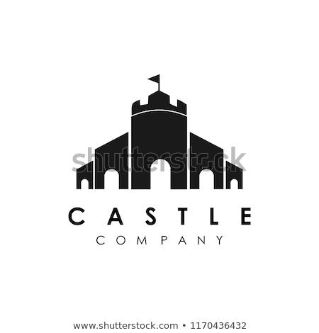 princess castle icon vector outline illustration Stock photo © pikepicture