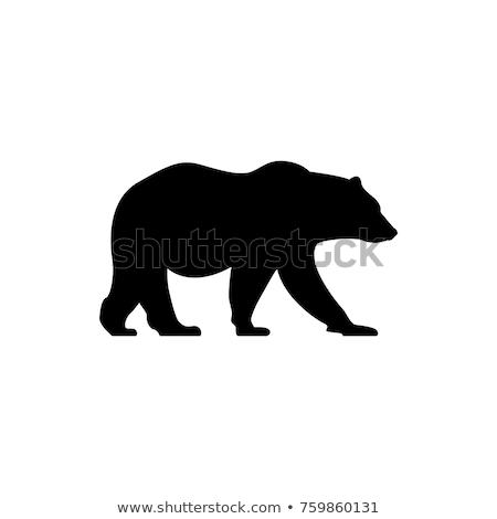 ретро гризли силуэта опасный хищник Сток-фото © barsrsind