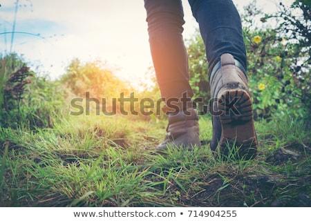 escursionista · escursioni · scarpe · primo · piano · escursione · piedi - foto d'archivio © bbbar