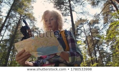 Néz ki erdő kora reggel erdő természet Stock fotó © filmstroem