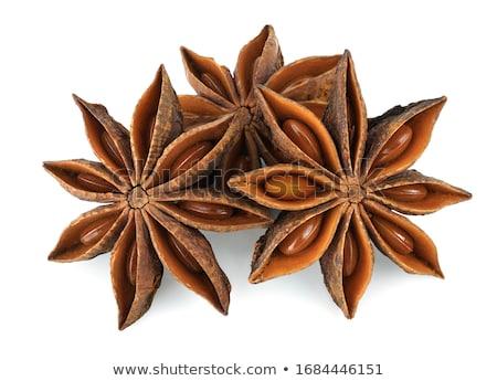 star anise spice stock photo © stephaniefrey