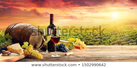 Vineyards and winery Stock photo © deyangeorgiev