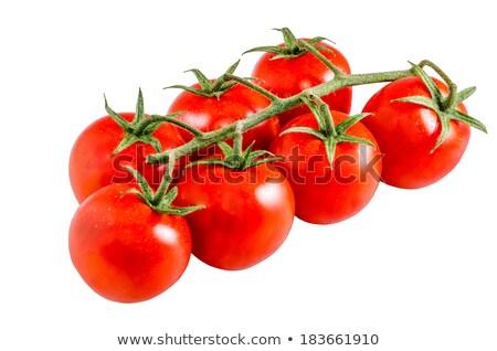 pembe · domates · yalıtılmış · beyaz · üst · görmek - stok fotoğraf © gbuglok