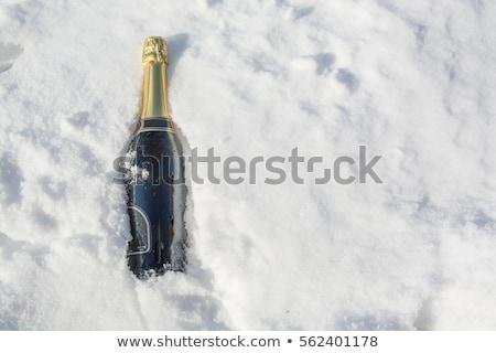 şişe · şampanya · kar · iki · gözlük - stok fotoğraf © compuinfoto