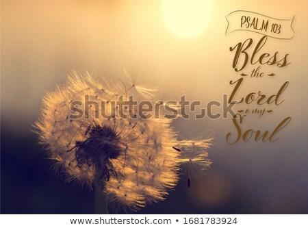 святой Библии книга глава желтый Сток-фото © sframe