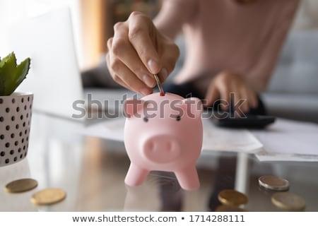 Focus экономия Piggy Bank место свет элегантный Сток-фото © Lightsource