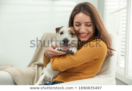 jack russel terrier and woman Stock photo © cynoclub