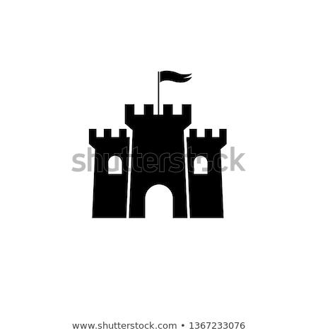Icon castle Stock photo © zzve