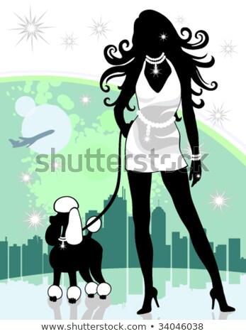 成功した · 女性 · 市 · 徒歩 · プードル - ストックフォト © kittasgraphics