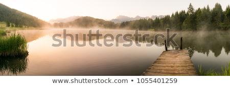 panorama of morning lake in fog stock photo © mikko