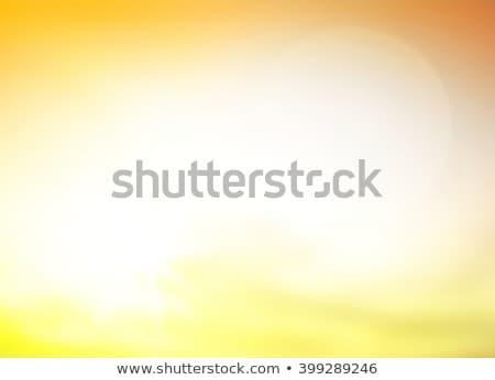summer background with yellow suns Stock photo © marinini