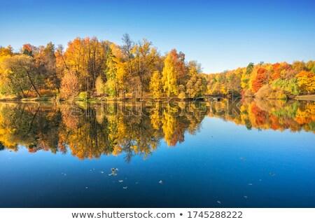 秋 葉 反射 水 空 ツリー ストックフォト © Alegria111