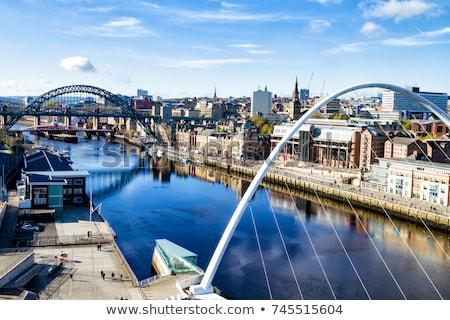 Newcastle pecsét fehér város gomb kultúra Stock fotó © chrisdorney