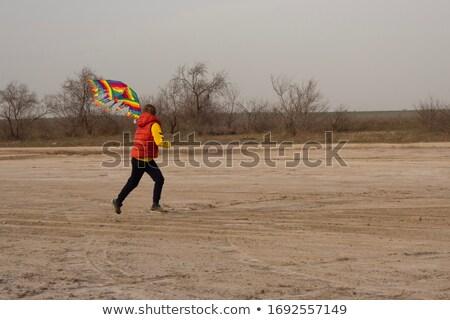 Tizenéves fiú repülés papírsárkány boldog nap nyár Stock fotó © monkey_business