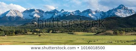 panoráma · terjedelem · hegyek · hó · naplemente · nap - stock fotó © vanessavr