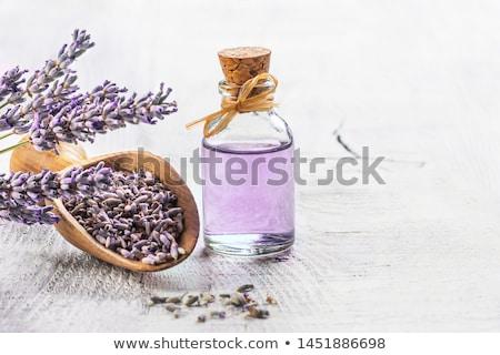 lavanda · essenza · fiori · bottiglia - foto d'archivio © marimorena