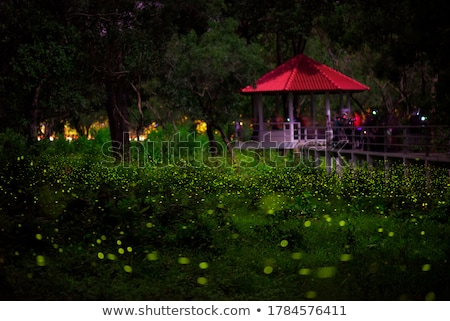 éjszaka illusztráció természet hold hegy fények Stock fotó © adrenalina