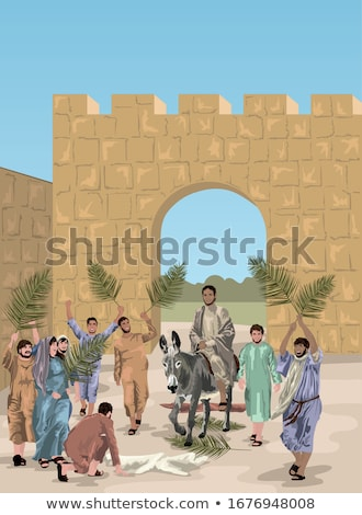 Jerusalem Donkey stock photo © rhamm
