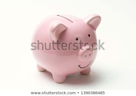 White Piggy Coin Bank Stock photo © stevanovicigor