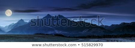 Montanhas noite estilizado sem costura escalada estrelas Foto stock © tracer