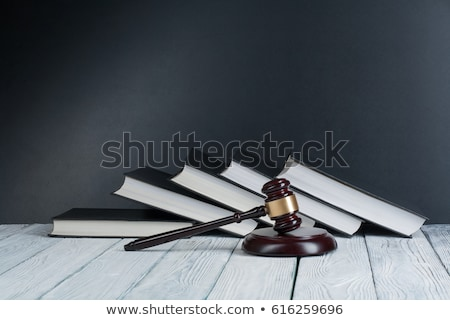 A law book with a gavel - International law Stock photo © Zerbor