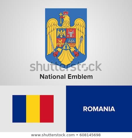 Abrigo armas Rumania textura arte signo Foto stock © netkov1