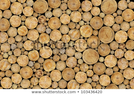 Log Wall Cross Stock photo © rghenry