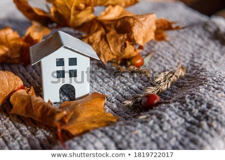 Stock photo: Fall House
