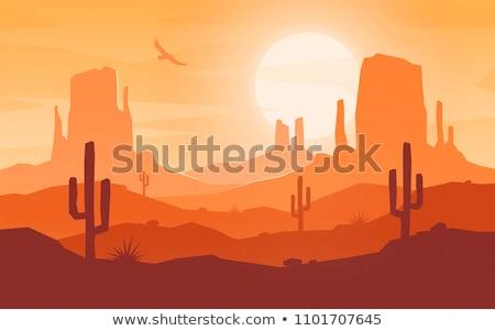 sol · deserto · mar · abstrato · pôr · do · sol · paisagem - foto stock © tracer