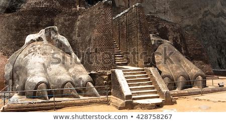 Lépcsőfeljáró oroszlán kastély Sri Lanka fa fal Stock fotó © Mikko