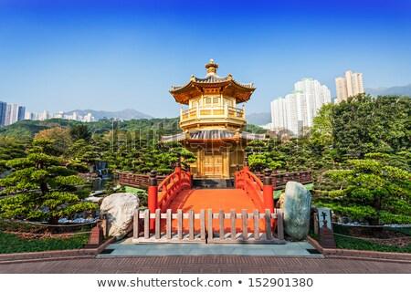 Arany tökéletesség Hongkong kert Kína fa Stock fotó © Taiga