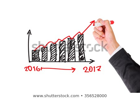 Growth Graph 2017 Marker Concept Stock photo © ivelin