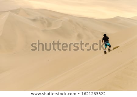 Dune Boarding Stock photo © zambezi