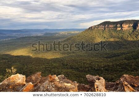 Matin lumière vallée bleu montagnes belle Photo stock © lovleah